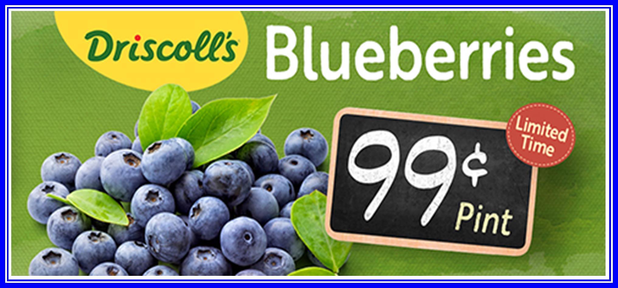 Blueberries Driscolls 99.jpg