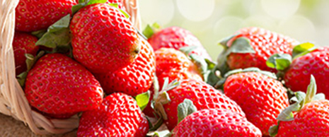 strawberries-219114730-2.jpg